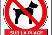 Une prohibition de porter des chiens à la plage