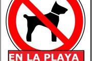 Prohibición de perros en la playa